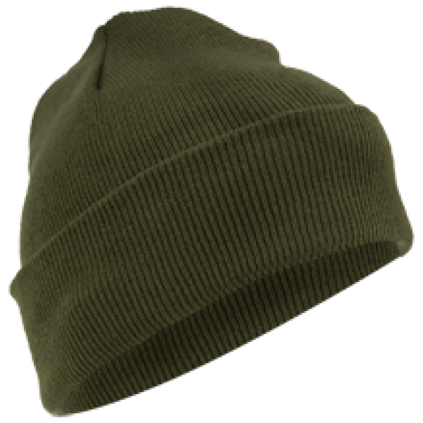 CAP 1017